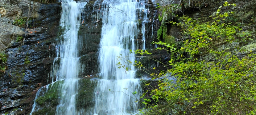 Hiking Trails- TOM'S CREEK FALLS, Marion