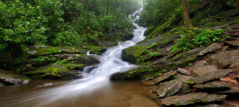 Roaring Fork Falls – A Dreary June Hike