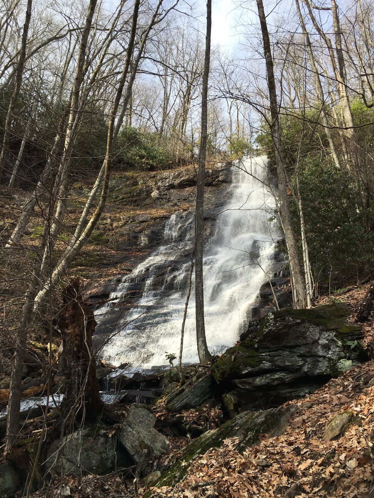 Log Hollow Falls and Falls on TributaryStreams