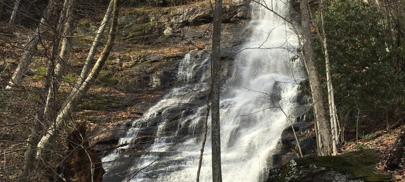 Log Hollow Falls and Falls on Tributary Streams
