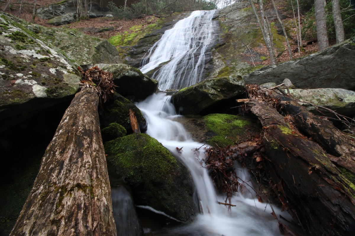 Little Lost Cove Creek Falls and a Daffodil Surprise
