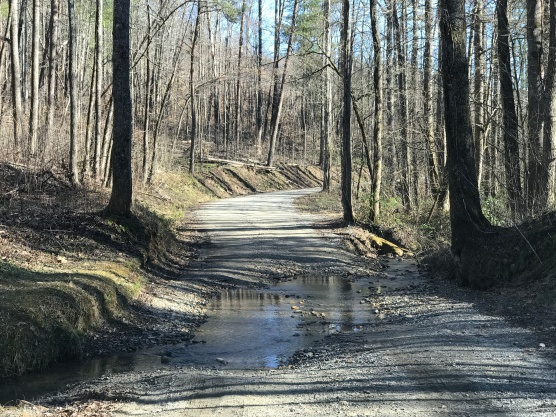 The small creek to ford